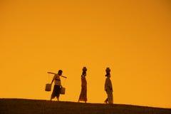 Siluetta degli agricoltori tradizionali asiatici Immagine Stock