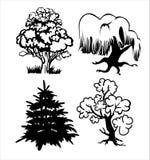 Siluetta degli alberi Immagine Stock Libera da Diritti