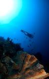 Siluetta degli operatori subacquei Immagine Stock Libera da Diritti