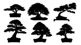 Siluetta dei bonsai Fotografia Stock