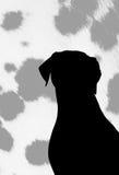 Siluetta dei cagnolini. Fotografia Stock Libera da Diritti
