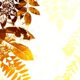 Siluetta dei fogli di autunno di Grunge Immagini Stock Libere da Diritti