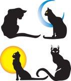 Siluetta dei gatti Immagini Stock