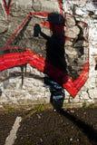 Siluetta dei graffiti immagini stock libere da diritti