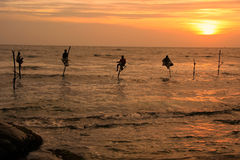 Siluetta dei pescatori al tramonto, Unawatuna, Sri Lanka Fotografia Stock