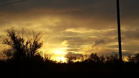 Siluetta dei pini della foresta contro le nuvole variopinte al tramonto Tramonto, siluette degli alberi immagine stock
