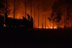 Siluetta dei vigili del fuoco che combattono un fuoco infuriantesi Immagini Stock