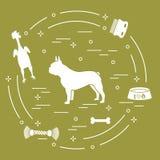 Siluetta del bulldog francese, ciotola, osso, spazzola, pettine, giocattoli Progetti l'elemento per la cartolina, l'insegna, il m royalty illustrazione gratis