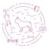 Siluetta del bulldog francese, ciotola, osso, spazzola, pettine, giocattoli Progetti l'elemento per la cartolina, l'insegna, il m illustrazione di stock