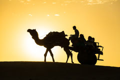 Siluetta del cammello con il vagone in dune del deserto del Thar Immagine Stock Libera da Diritti