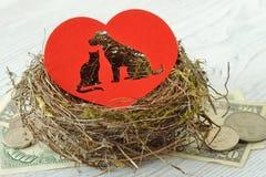 Siluetta del cane e del gatto tagliata nel cuore di carta in un nido sul concetto soldi delle donazioni del riparo dell'animale d fotografia stock libera da diritti