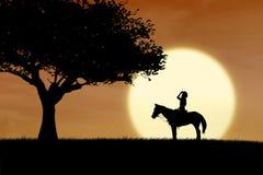 Siluetta del cavaliere del cavallo al tramonto in parco Fotografie Stock Libere da Diritti
