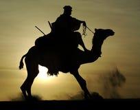 Siluetta del cavaliere del Tuareg e di aumentare del cammello Immagine Stock