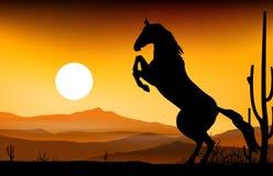 Siluetta del cavallo con il fondo del paesaggio Fotografia Stock Libera da Diritti