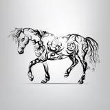 Siluetta del cavallo dell'ornamento floreale Fotografie Stock Libere da Diritti