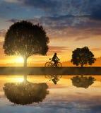 Siluetta del ciclista Fotografia Stock