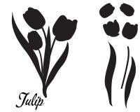Siluetta del fiore del tulipano Mazzo dei tulipani royalty illustrazione gratis