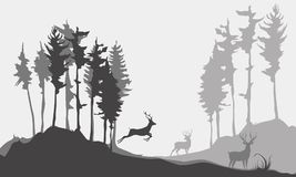 Siluetta del fondo dei cervi nella foresta Immagini Stock