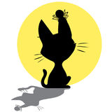 Siluetta del gatto con il ragno sul fondo della luna Fotografie Stock