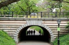 Siluetta del giocatore di sassofono sotto un ponte in Central Park NYC Fotografia Stock