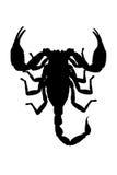 Siluetta del imperator di Pandinus dello scorpione isolata sulla parte posteriore di bianco royalty illustrazione gratis