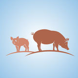 Siluetta del maiale Immagine Stock