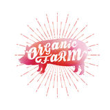 Siluetta del maiale dell'acquerello Azienda agricola organica Fotografia Stock