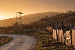 siluetta del paesaggio di tramonto della torre e della strada di caccia Fotografie Stock Libere da Diritti