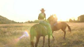 Siluetta del primo piano di un cavallo vicino al lago stock footage