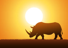 Siluetta del rinoceronte Immagini Stock Libere da Diritti