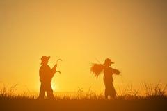Siluetta del riso e della falce della tenuta dell'agricoltore sul campo Immagini Stock