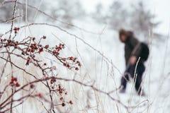 Siluetta del viaggiatore per scalare la montagna nell'inverno Fotografia Stock Libera da Diritti