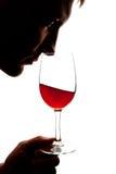 Siluetta del vino degusting dell'uomo Immagine Stock
