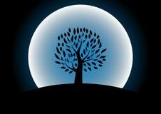 Siluetta dell'albero della luna contro Fotografia Stock Libera da Diritti