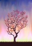 Siluetta dell'albero di autunno Immagine Stock