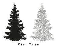 Siluetta dell'albero di Natale, contorni e Fotografie Stock