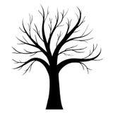 Siluetta dell'albero di vettore Fotografia Stock