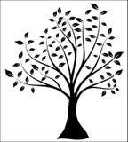 Siluetta dell'albero, figura in bianco e nero di vettore illustrazione di stock