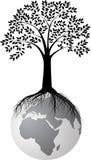 Siluetta dell'albero su terra Immagine Stock