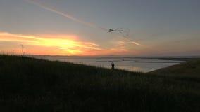 Siluetta dell'aquilone di volo del ragazzo al movimento lento HD di tramonto archivi video