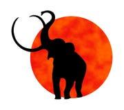 Siluetta dell'elefante Fotografia Stock