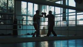 Siluetta dell'istruttore di giovane pugile di addestramento su un anello video d archivio