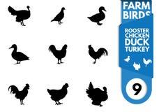 Siluetta dell'uccello dell'azienda agricola Immagine Stock