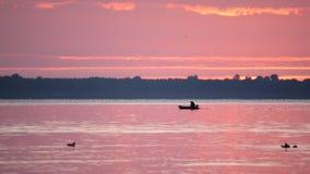 Siluetta dell'uomo in barca e delle anatre all'alba sul fiume archivi video