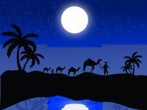 Siluetta dell'uomo con i cammelli Fotografia Stock Libera da Diritti
