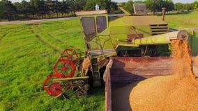 Siluetta dell'uomo Cowering di affari Caricamento del grano di cereale in video d archivio