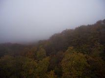 Siluetta dell'uomo Cowering di affari Nebbia di mattina sopra la foresta Immagini Stock Libere da Diritti