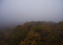 Siluetta dell'uomo Cowering di affari Nebbia di mattina sopra la foresta Fotografia Stock