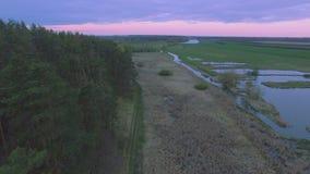 Siluetta dell'uomo Cowering di affari Sorvolare il fiume vicino all'abetaia stock footage