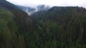 Siluetta dell'uomo Cowering di affari Sorvolare le alte montagne in belle nuvole Colpo della camera aerea Ventili le nubi nebbia  archivi video